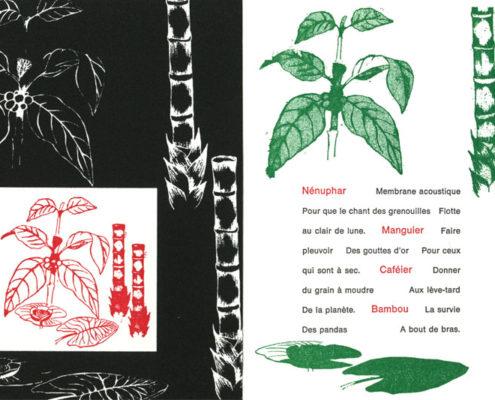 Ode à la nature Livre Gaelle Pelachaud
